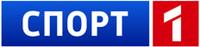 Скандинавское дежавю - Чемпионат мира по хоккею 2013
